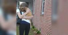 Gato perdido há 536 dias se joga no colo da mãe após ser finalmente reencontrado