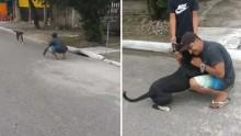 Em Praia Grande, homem tem reencontro emocionante com seu cão (veja o vídeo)