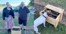 Vovô vendo que cães de parque amam gravetos, cria caixa com os melhores para eles brincar