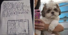 Menina de 8 anos orava todos os dias a Deus para encontrar seu cão shih-tzu perdido