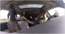 Homem filma momento hilário em que diz para seus 4 cães: 'É hora de ir no parque' (veja o vídeo)
