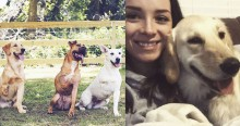 Casal exemplar e amoroso adota cães de 3 patas ignorados em abrigo por preconceito