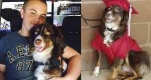 Cão treinado que salvou adolescente de depressão e suicídio, é homenageado em sua formatura