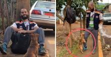 Cão danado não dá trégua para socorrista de MG: '5 horas tentando cruzar na minha perna'