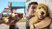 'Não tenho namorada, gasto com meu cão': Dono aluga outdoor para parabenizar cachorro pelo aniversário