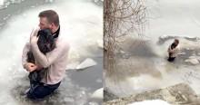 Com ajuda de 2 cães farejadores, ativista salva cão preso em riacho congelado de parque
