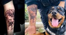 Cachorro rottweiler K9 salva vida de guarda e homem tatua rosto do animal em agradecimento