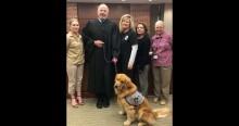 Juiz leva cão terapeuta a tribunal para aliviar estresse de crianças vítimas de violência