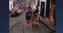 Atleta perde patrocínio após covardemente chutar um cachorro; veja o vídeo