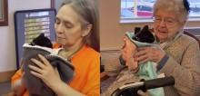 Idosos de asilo mostram o quão bom e terapêutico é ter um gatinho de estimação