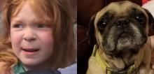 Cão é encontrado cuidando de menina de 4 anos desaparecida em fazenda