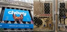 Rede varejista Chewy faz doação milionária para abrigos de proteção animal dos EUA