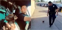 Policiais encontram cão minúsculo em estrada, o adotam e animal se torna um K9 especial