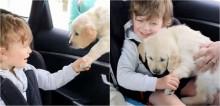 Menino autista não-verbal abre sorrisão ao ganhar um lindo filhote golden retriever