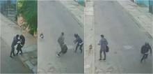 Ao perceber que vizinho está sendo assaltado, cachorro avança e faz com que o suspeito desista e fuja; vídeo