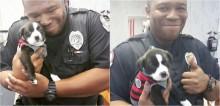 Policial adota filhote abandonado encontrado em vala: 'Me apaixonei por ele'