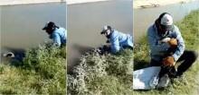 Coletor de lixo salva cachorro de afogamento e ele o abraça calorosamente após ajuda