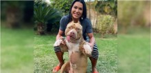 Gracyanne Barbosa homenageia Thor, seu american bully, em post no Instagram: 'Amigo sincero'