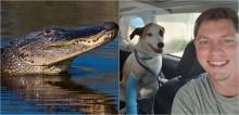 Ex-sargento luta com jacaré de 4 metros para salvar seu cachorro na Flórida