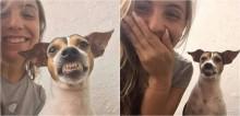 Voluntária de SP chama cachorrinha para tirar uma selfie, ela abre o maior sorrisão e fotos viralizam