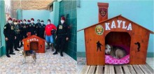 Após pedir comida a policiais, cadela é ajudada e acolhida em delegacia no Peru