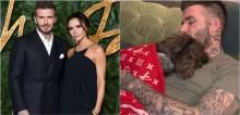 Internautas criticam Victoria e David Beckham por cobrirem seu cão com cobertor de grife