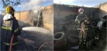 Corpo de Bombeiros salva vida de cadelinha encurralada por incêndio em borracharia em Minas Gerais