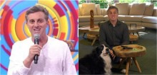 Cão border collie de Luciano Huck rouba a cena no 'Caldeirão' e conquista internautas