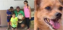 Depois de 6 anos desaparecido, cachorro reaparece com melhor amigo que ele fez nas ruas
