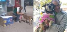 Homem improvisa casa de papelão para proteger cadela de rua do frio, a veste com roupinha e comove internautas