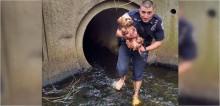 Policial perde meias e sapatos para resgatar cadela perdida em túnel