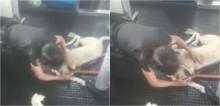 Cadela se perde em estação de metrô em São Paulo e é acalmada por segurança; vídeo