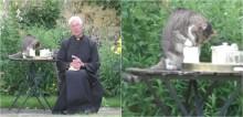 Gato aproveita que reverendo está concentrado em live no Reino Unido e 'rouba' leite; confira