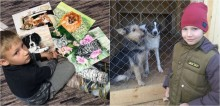 Menino de 9 anos cria pinturas de pets para trocar por comida para animais carentes - fotos