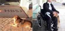 Após internação, dono reencontra seu cachorro que o aguardou em frente a hospital no RS