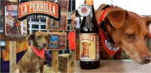 Cervejaria estampa garrafas com fotos de cães de rua e reverte parte do lucro para ajudá-los