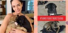Atriz Claudia Ohana se envolve em polêmica ao devolver depois de 7 meses cães adotados