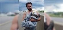 Homem estaciona carro em rodovia movimentada para salvar águia-careca ferida no acostamento