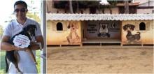 Homem cria 'cãodomínios' para cães de rua na Bahia; confira