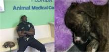 Foto de policial dormindo em fila do veterinário após salvar filhote viraliza