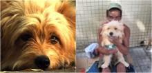 Morador de rua recusa proposta de R$ 2 mil para vender o seu cão: 'Não vendo esse cachorro por nada, ele é a minha família'
