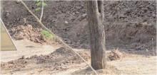 Encontre o leopardo: Fotógrafo captura imagem de felino camuflado em região terrosa e foto viraliza