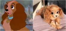 Snapchat lança filtro da Disney e internautas se divertem aplicando em seus pets