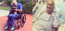 Veterano da Marinha de 86 anos tem derrame sozinho em casa e é salvo após cadela chihuahua chamar socorro