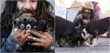Morador de rua mantém mais de 16 cães vivendo em sua barraca: 'O amor deles é puro e incondicional'