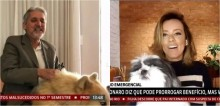 Cães 'invadem' programa ao vivo da Globo News durante comentários de seus donos jornalistas