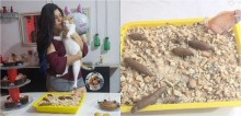 Humor: Dona faz bolo em formato de caixa de areia para comemorar aniversário de gatinha e internautas reagem