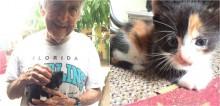 Vovô acolhe gatinha e sua ninhada escondido da esposa, que não queria saber de gatos em casa