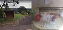 Cachorro encontra bebê recém-nascida abandonada e late insistentemente em busca de ajuda