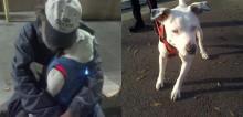 Com câncer terminal, morador de rua tem como último desejo que alguma família adote sua amada cachorrinha